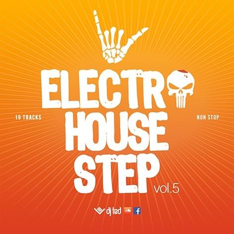 Electro House Step 5 - Bpm Step