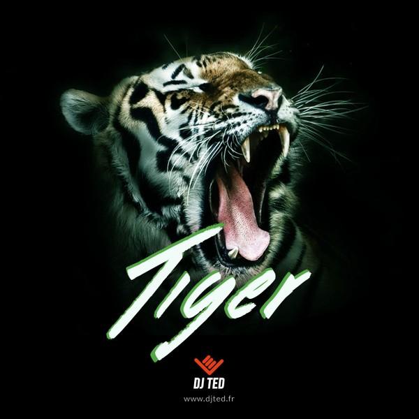 TIGER 138.144 BPM