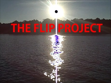 THE FLIP PROJECT