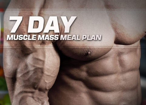 MASS BUILDER - 3000 kcal (7 DAY MEAL PLAN)