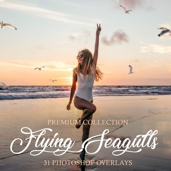 Flying Seagulls Photoshop Overlays