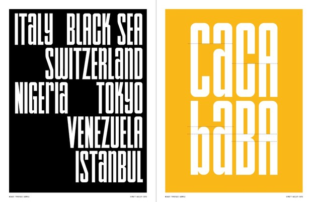 NSW01 Typeface (1-2 User License)