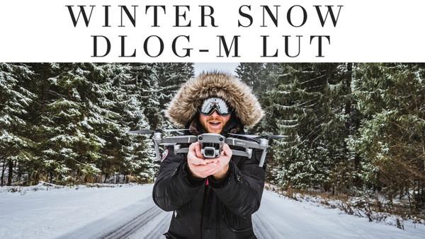 WINTER SNOW DLOG-M LUT