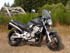 2002-2003 Honda CB900F 919 Hornet Service Repair Workshop Manual DOWNLOAD (2002 2003)