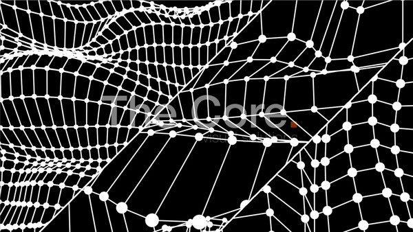 00055 WIRE GRID BUNDLE BY THE CORE