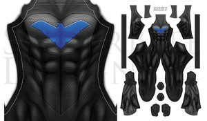 Nightwing Animate Serie