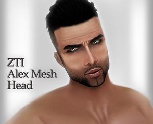 Alex Mesh Head