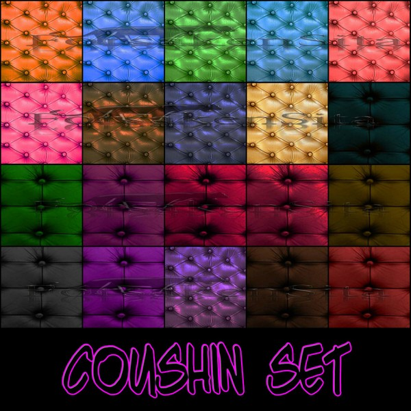 Coushin Set Catty Only!