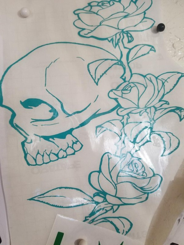 Skull/Roses