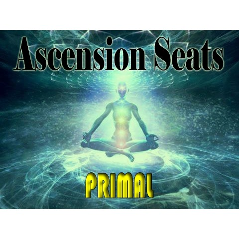 Ascension Seats - Primal