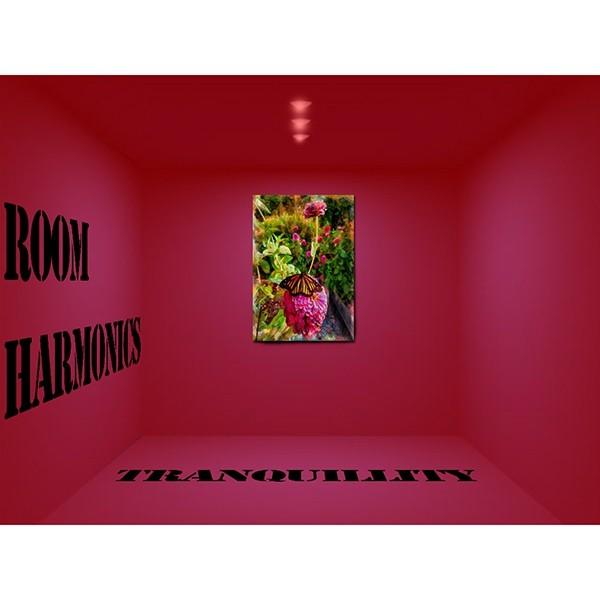 Room Harmonics - Tranquillity