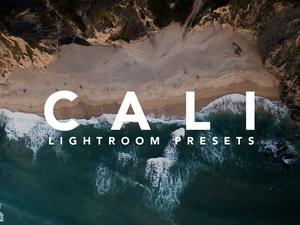 Cali Lightroom Presets + LUT