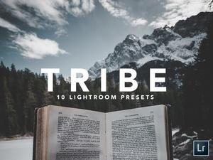 10 LIGHTROOM PRESETS  TRIBE