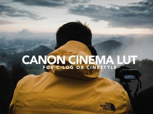 Canon Cinema LUTs (for 80D, 5D, 6D...)