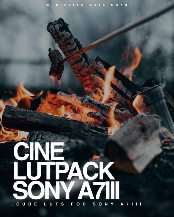 Cine LUTs for Sony A7III, A7RIII & a6500/a6400