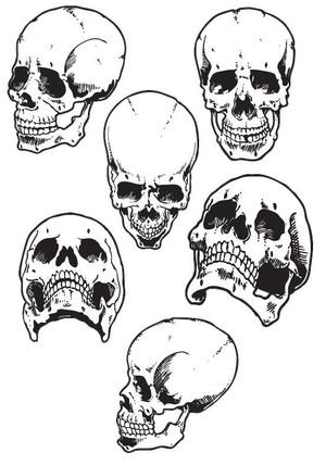 6 Skulls
