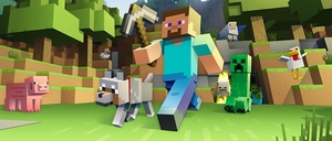 1 Minecraft Full Access Account