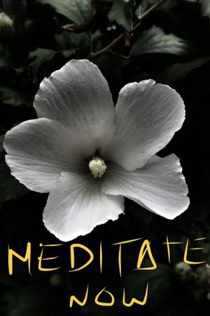 Cos'e' la Meditazione 5