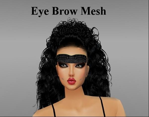 Eye Brow Mesh