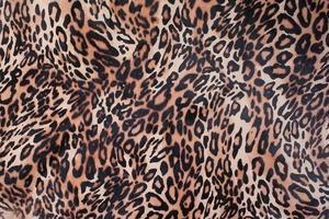 Leopard Print Elevator