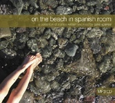 On the Beach in Spanish Room (Janis Spence)