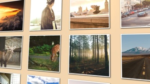 Template Photo Wall Gallery sony vegas 12 13