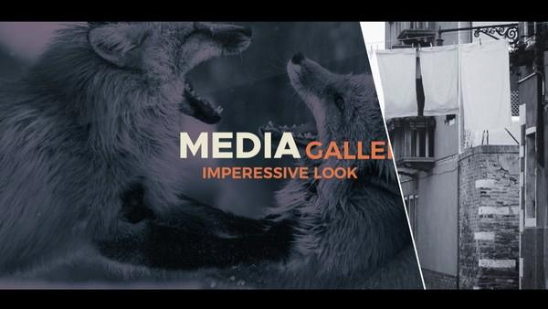 Template Line Media Gallery  sony vegas 12 13 14 1 5