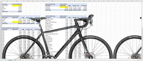 REPORT - NYC CitiBike Bike Share Trip Data Report