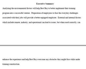 External and Internal Environmental Analysis Paper STR 581 Week 3 Assignment