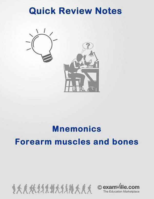 Mnemonic for Forearm Muscles and Bones