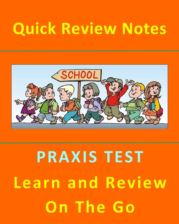 PRAXIS English 0041 Test - 300+ Quick Review Study Guide