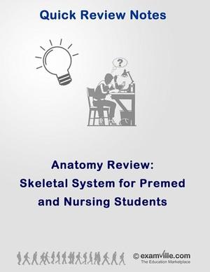 Skeletal System Review for Nursing Students