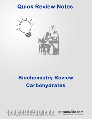 Biochemistry Review - Carbohydrates