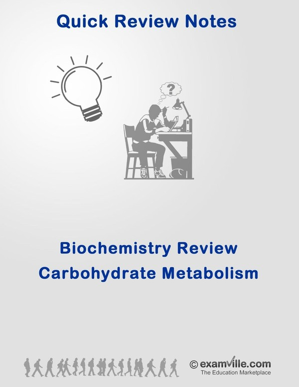 Carbohydrate Metabolism Review Notes