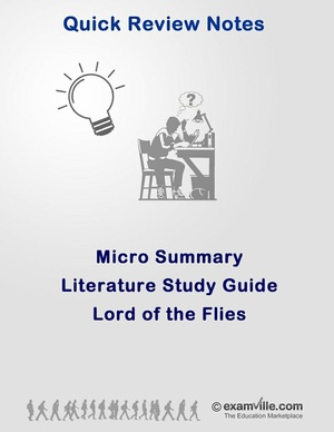 Literature Micro Summary - Lord of the Flies