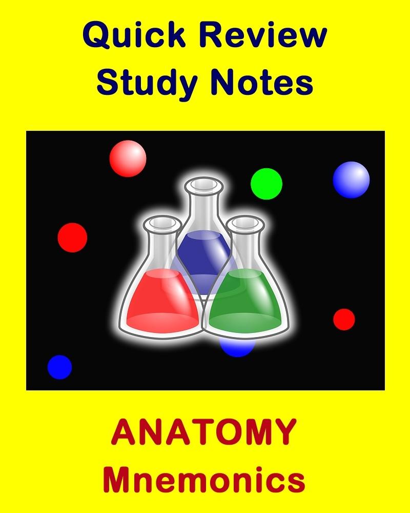 page 3 examville school psychologist praxis study guide school psychology praxis study guide 5402