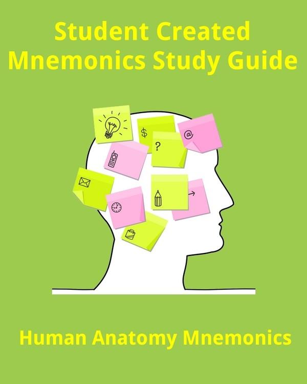 Human Anatomy Mnemonics for Students & Health Professionals