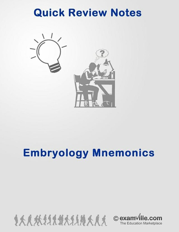 Embryology Mnemonics