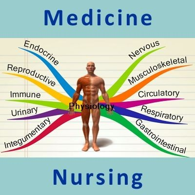 The Urinary System Review for Premed and Nursing Students