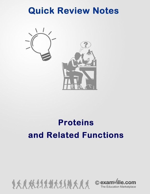 Protein and Related Functions Review Notes