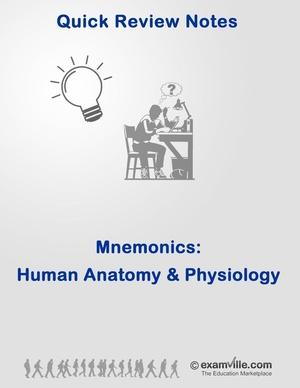 Mnemonics for Human Anatomy & Physiology