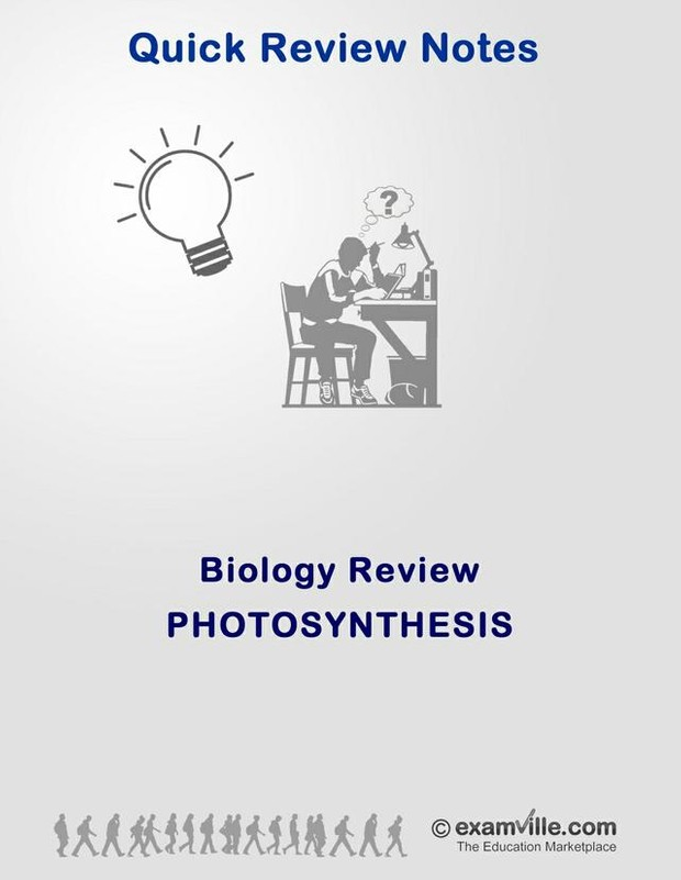 Biology Review:  Photo Synthesis