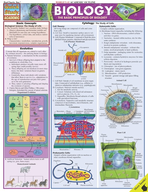 Biology - Quick Review Study Guide for All Students