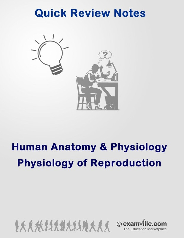 Physiology of Human Reproduction (Quick Study Review Notes)