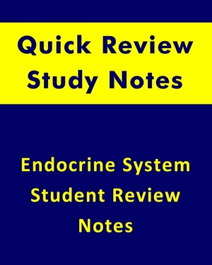 Human Endocrine System Quick Review Notes for Health Sciences Students