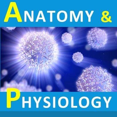 Renal Physiology and Acid-Base Balance