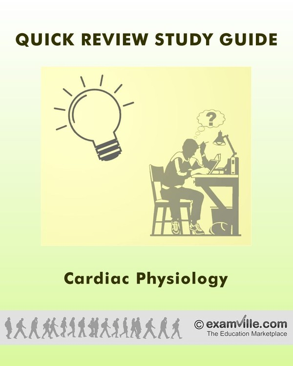 Quick Review Notes: Cardiac Physiology