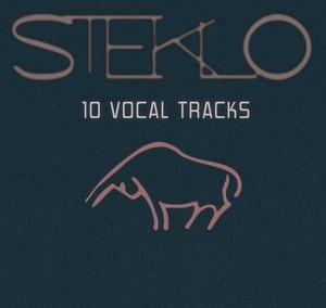 10 VOCAL TRACKS by STEKLO