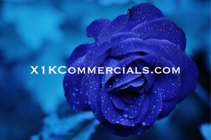 Order A Promo Commercial