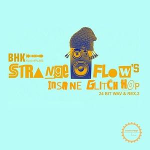 StrangeFlow's Insane Glitch Hop Samples